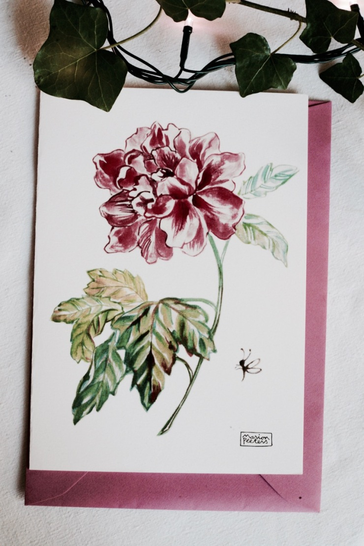 3#illustrationmarionpeeters #cartesaquarelle#leverger#pivoine