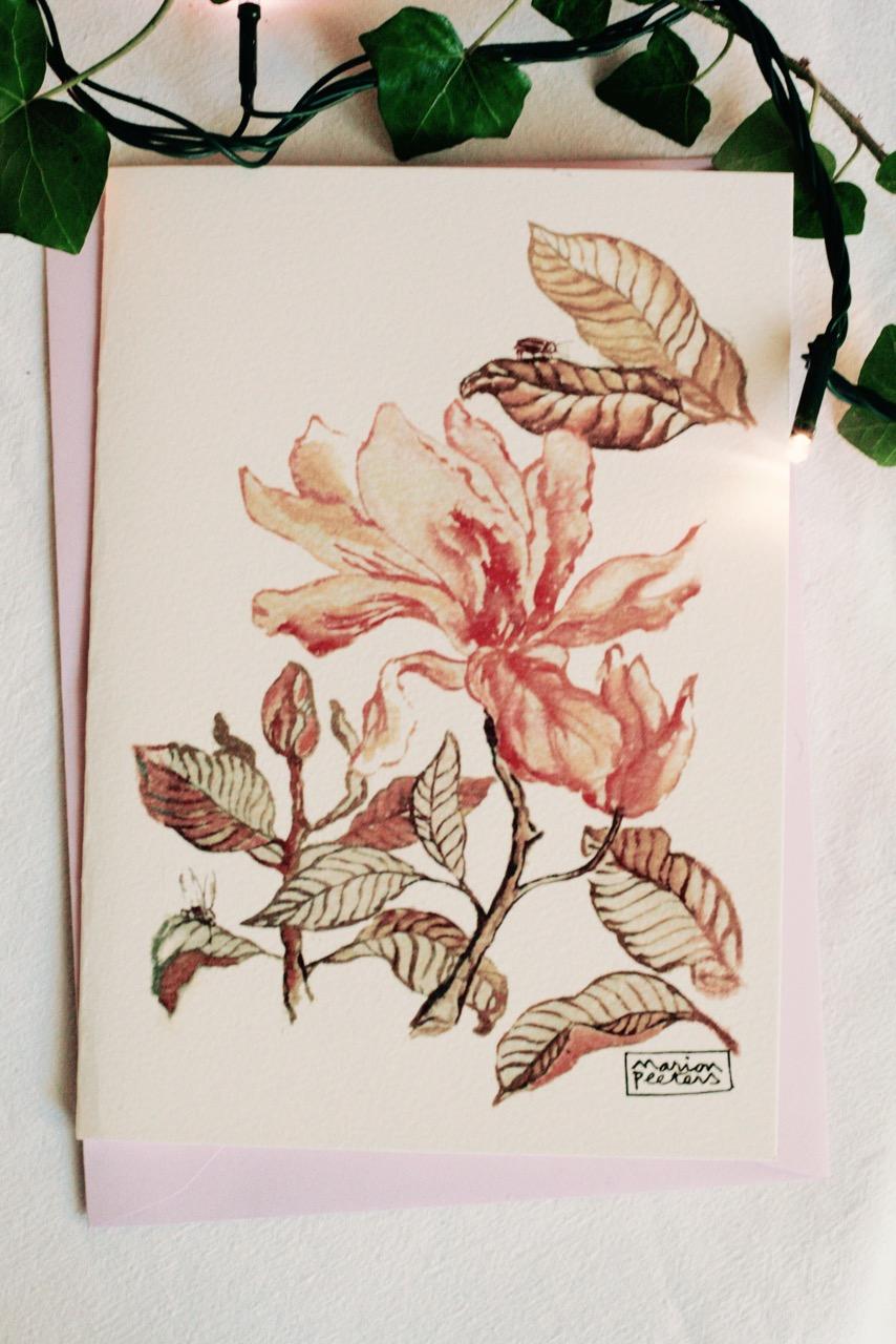 4#illustrationmarionpeeters #cartesaquarelle#leverger#magnoliadetail