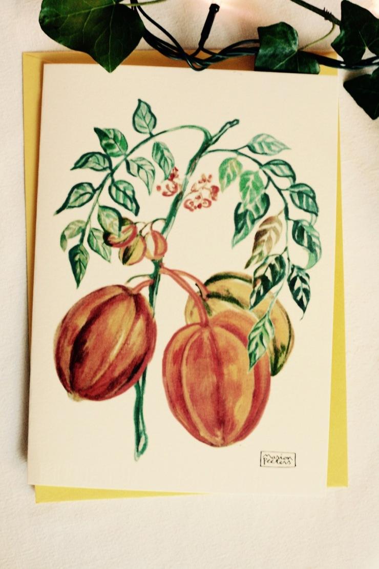 5#illustrationmarionpeeters #cartesaquarelle#jardinexotique#carambole