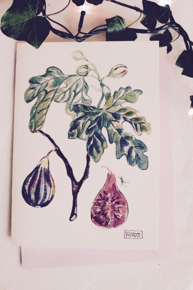 5#illustrationmarionpeeters #cartesaquarelle#jardinexotique#figue
