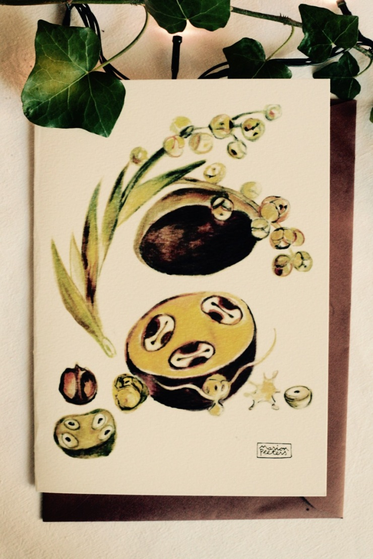 5#illustrationmarionpeeters #cartesaquarelle#jardinexotique#graine