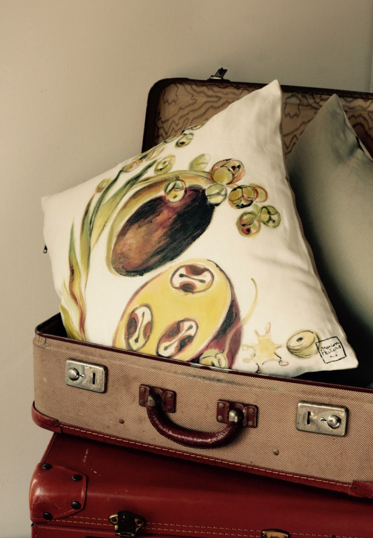 coussin graine valise