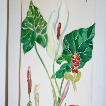 « arum d'Ethiopie » 70x150 cm – toile de coton épaisse – 150€